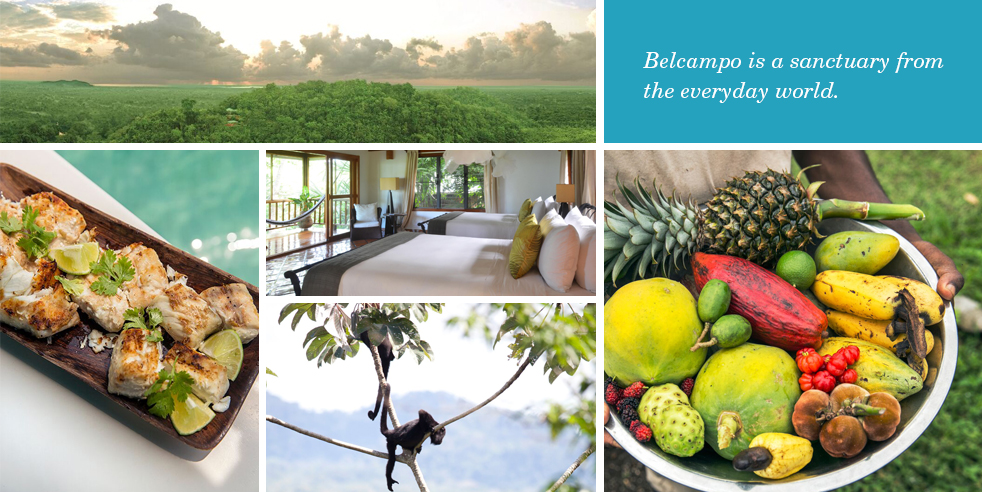 Belcampo is a sanctuary from the everyday world.