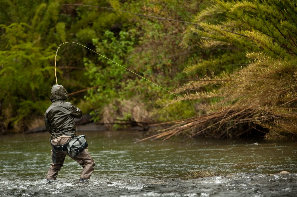 fly fisherman on the bite